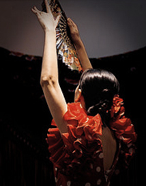 learn the traditional flamenco